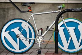 Secure-your-WordPress-website-NOW-with-these-8-simple-steps